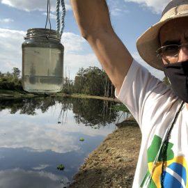 Dia do Rio Tietê: pandemia e clima impactam na qualidade da água